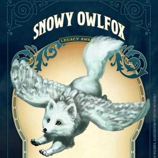 snowy owlfox